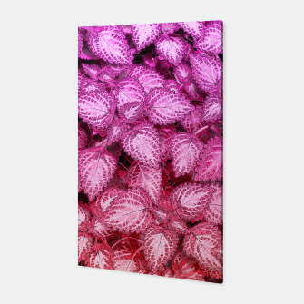 Lovely Leaves Canvas thumbnail image