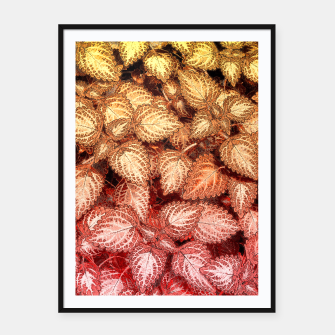 Lovely Leaves, in Red and Gold Framed poster thumbnail image