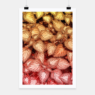 Lovely Leaves, in Red and Gold Poster thumbnail image
