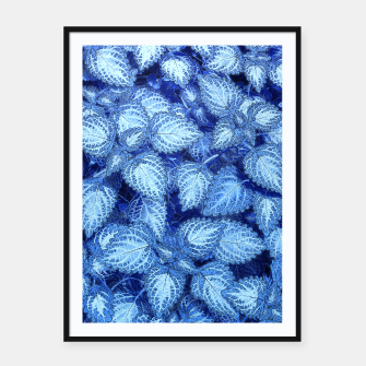 Lovely Leaves, in Blue Framed poster thumbnail image