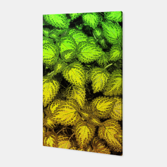 Lovely Leaves, in Green and Gold Canvas thumbnail image