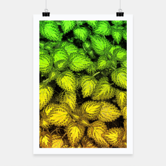 Lovely Leaves, in Green and Gold Poster thumbnail image