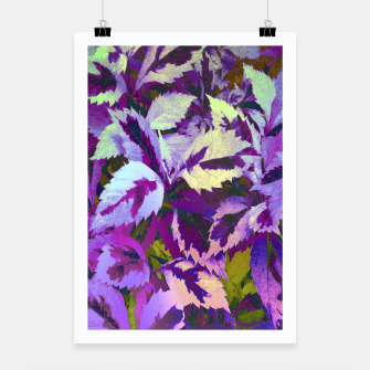 Thumbnail image of More Lovely Leaves, Purple Shades Poster, Live Heroes