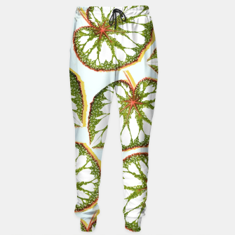 Thumbnail image of Prodigy Sweatpants, Live Heroes