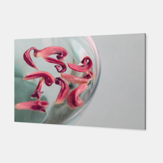 Thumbnail image of Red Petals Canvas, Live Heroes