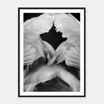 Thumbnail image of Swan Framed poster, Live Heroes