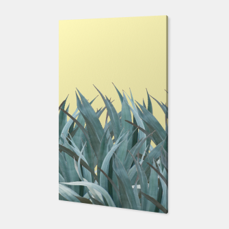 Thumbnail image of Agaves Canvas, Live Heroes