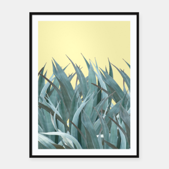 Thumbnail image of Agaves Framed poster, Live Heroes