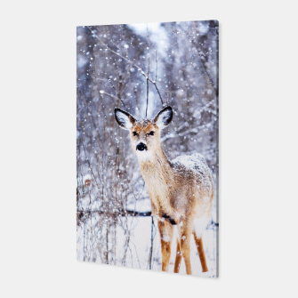 Thumbnail image of Missing Female / Winter Photography Canvas, Live Heroes