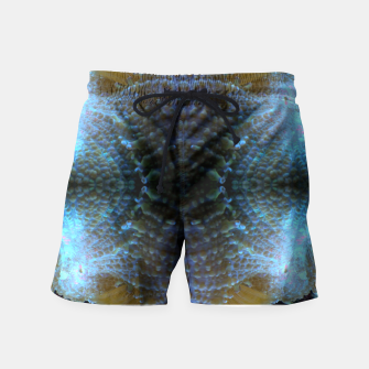 Thumbnail image of Mushroom Mass Swim Shorts, Live Heroes