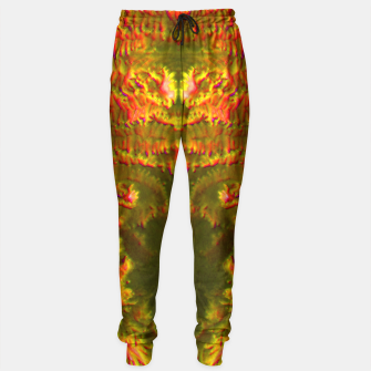 Thumbnail image of Fire tunnel Sweatpants, Live Heroes