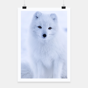 Thumbnail image of White Fox Photography Poster, Live Heroes