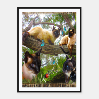Thumbnail image of Siamese Sophie playing with ladybird Framed poster, Live Heroes