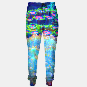 Thumbnail image of Zoa Seascape Sweatpants, Live Heroes