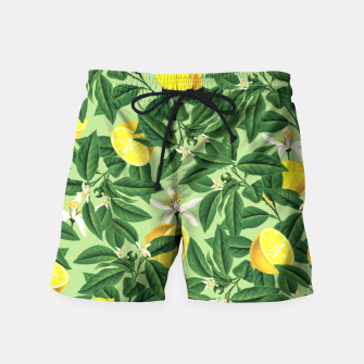 Lemonade V2 Swim Shorts thumbnail image
