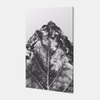 Thumbnail image of leaf texture background in black and white Canvas, Live Heroes