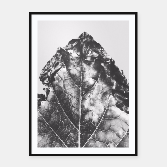 Thumbnail image of leaf texture background in black and white Framed poster, Live Heroes