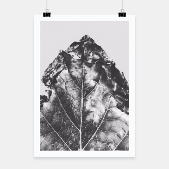 Thumbnail image of leaf texture background in black and white Poster, Live Heroes