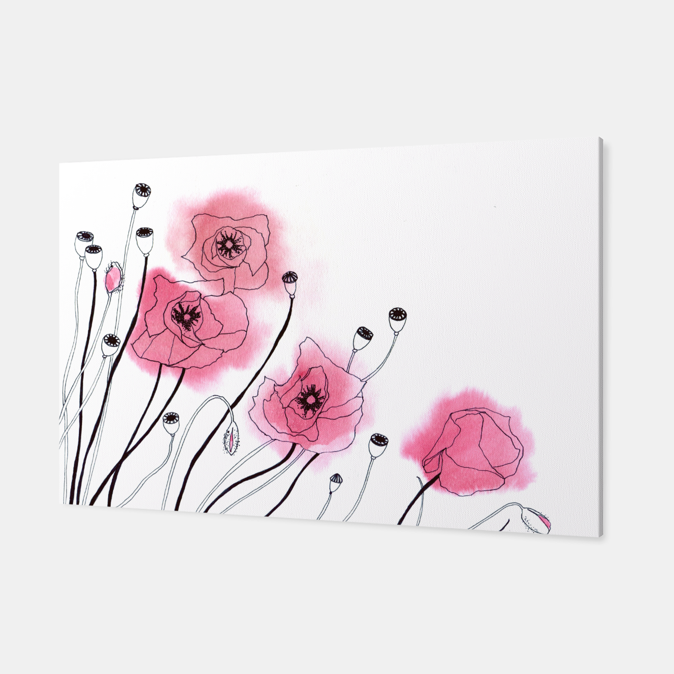 Image of Poppies Canvas - Live Heroes