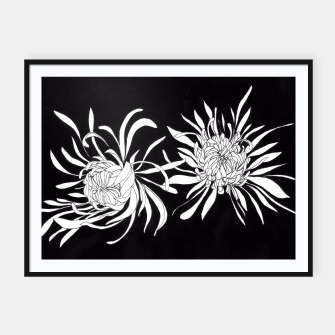 Thumbnail image of Chrysanthemums Framed poster, Live Heroes