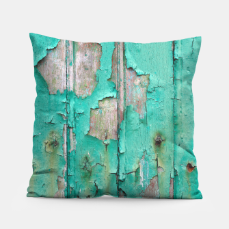 Green door Pillow obraz miniatury