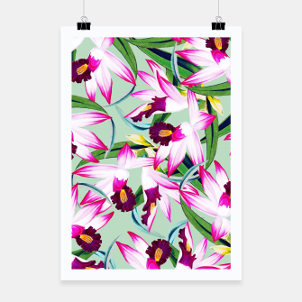 Thumbnail image of Belle âme Poster, Live Heroes