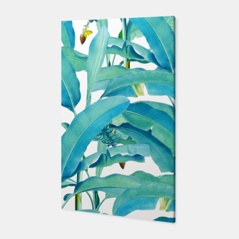 Thumbnail image of Banana Forest Canvas, Live Heroes
