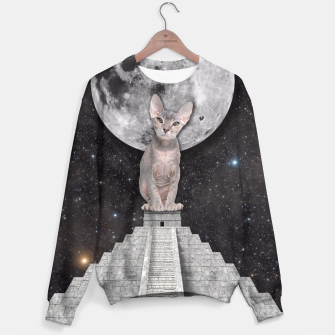 Thumbnail image of THE CAT Sweater, Live Heroes