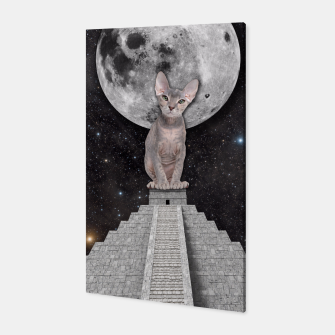 Thumbnail image of THE CAT Canvas, Live Heroes