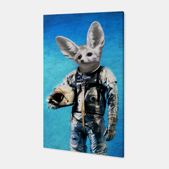 Thumbnail image of Fennec The Captain Canvas, Live Heroes