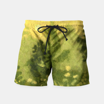Miniatur Summer lawn, felt painting, green & yellow Swim Shorts, Live Heroes