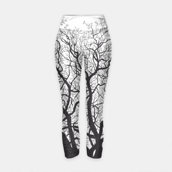 Thumbnail image of Tree Yoga Pants, Live Heroes