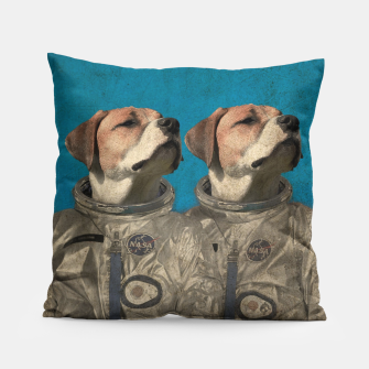 Thumbnail image of Journey Into Outer Space Pillow, Live Heroes