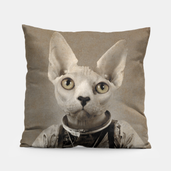 Thumbnail image of Lost In Space Pillow, Live Heroes