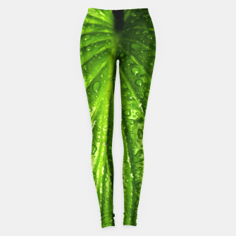 Miniatur Green Wet Leaf Leggings, Live Heroes