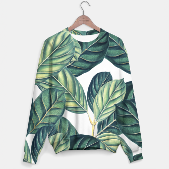 Thumbnail image of Botany Sweater, Live Heroes