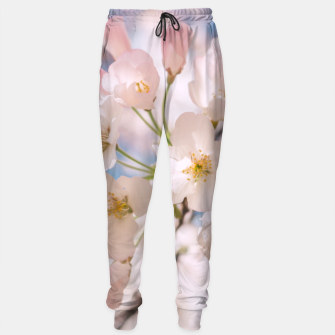 Thumbnail image of White Spring Cherry Trees Blossom Sweatpants, Live Heroes