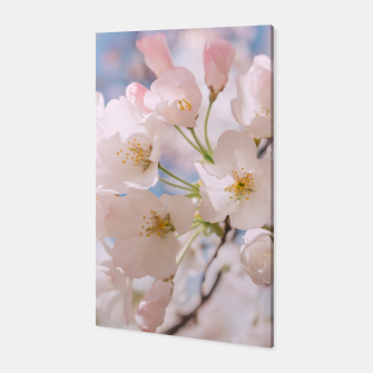 Thumbnail image of White Spring Cherry Trees Blossom Canvas, Live Heroes