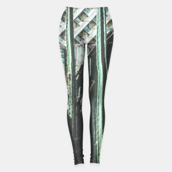 Thumbnail image of cactus with green and white wooden fence background Leggings, Live Heroes