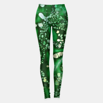 Thumbnail image of Emerald Bubbles  Leggings, Live Heroes