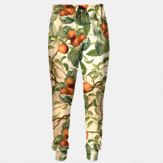 Thumbnail image of  Vintage Fruit Pattern Sweatpants, Live Heroes