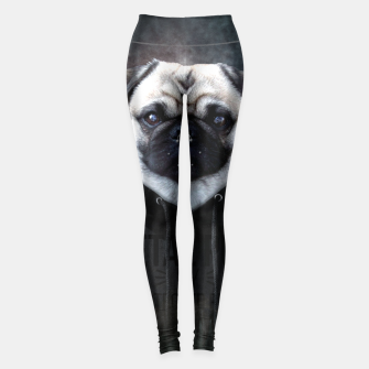 Metal Pug Leggings thumbnail image
