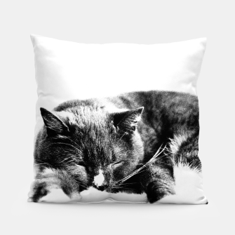 Cute Sleepy Kitty Pillow thumbnail image