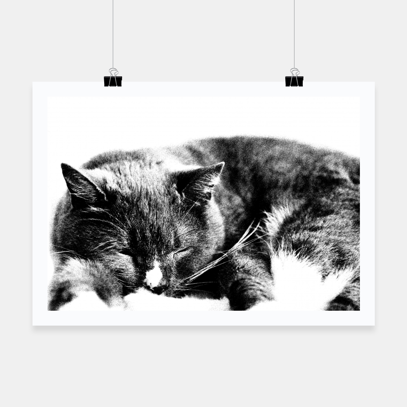 Image of Cute Sleepy Kitty Poster - Live Heroes
