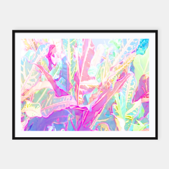 Tropical croton leaves 1/2 Framed poster thumbnail image