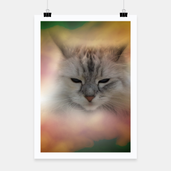 Thumbnail image of the cat Poster, Live Heroes
