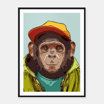 Thumbnail image of Skater chimp, Live Heroes