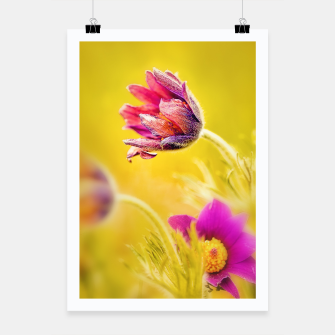 Thumbnail image of Spring Sleeping Flower Poster, Live Heroes