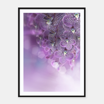 Thumbnail image of Violet Orchids Framed poster, Live Heroes