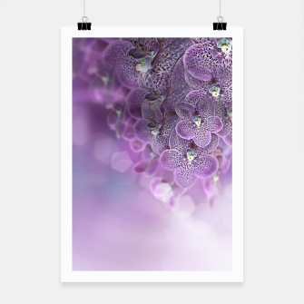 Thumbnail image of Violet Orchids Poster, Live Heroes